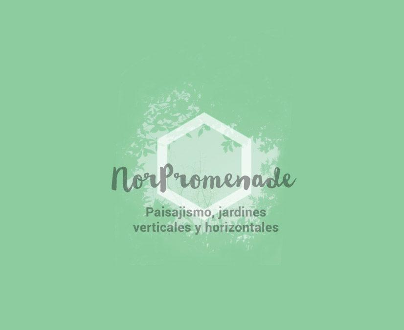 Estrenamos nuevo blog de Norpromenade